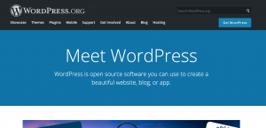 Is WordPress the right tool for your small business website?